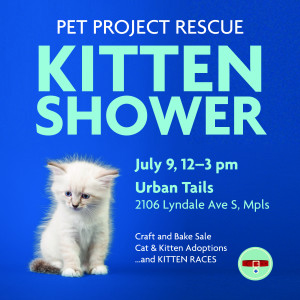KittenShower-FB-2016